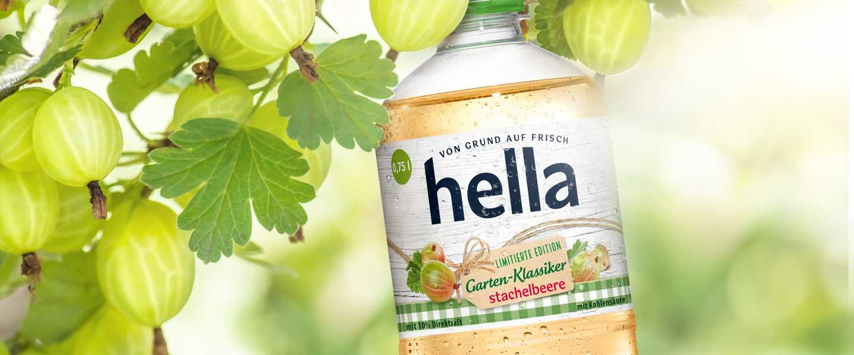 hella Garten-Klassiker Stachelbeere - News - justblue.design